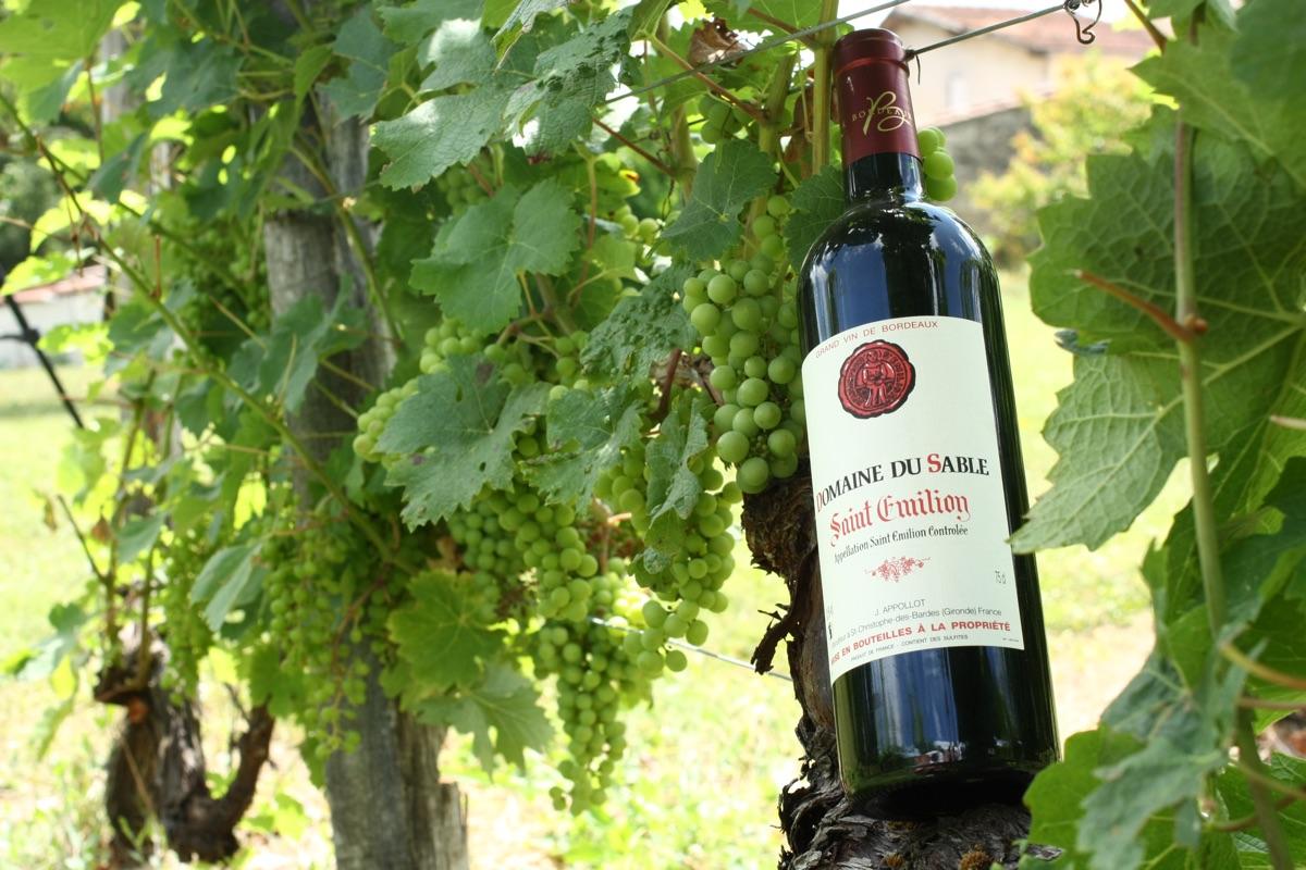 Vin Domaine Du Sable